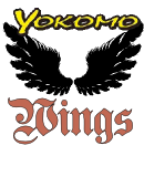 Yokomo Wings